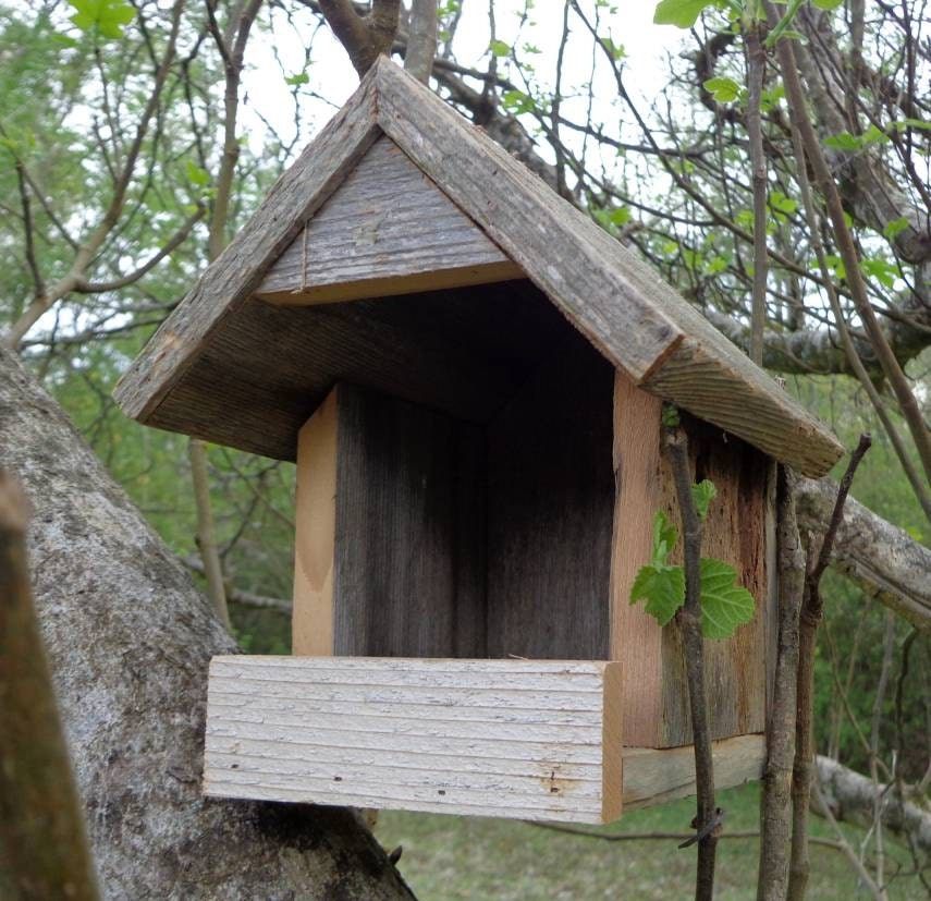 Rustic nesting shelter for robins mourning doves and other for Dove bird house