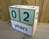 Baby age blocks - weeks, months, years, grade age blocks- baby shower gift - mint, gray - chevron, polka dots