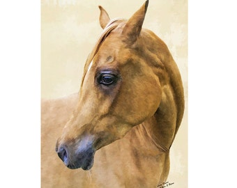 horse card, blank card, greetings card, birthday card, note card, thank you card, blank note card, horse note card, horse blank card