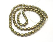 Super SALE Olive Green Rice Pearls, Green Freshwater Pearls 5x3mm --full strand