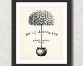 Belle Jardiniere Topiary Botanical Canvas Art Print - Home Decor - Multiple Sizes Starting at USD 15.00+