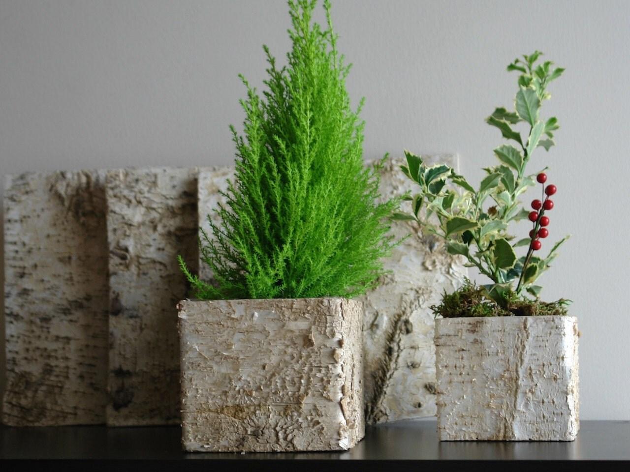 Corteccia vasi centrotavola scatole di legno albero di for Vasi di legno