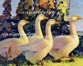 Geese at Sunset Restored Antique Art Print Original from 1936 Great Print for Any Room