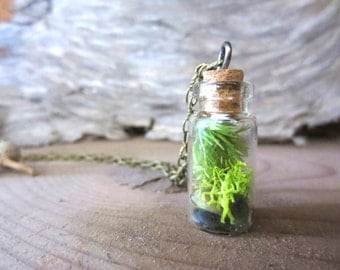 You are my World....Tiny Live Terrarium Necklace Moss Vial pendant, Magic little live necklace