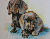 Print signed by the original drawing 29 x 39 cm, pastel limited edition! Dachshund puppies.