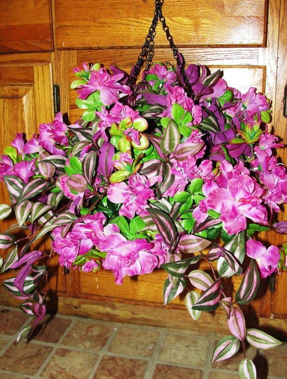 how to make wandering jew flower