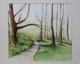 Daffodil Woods - Original Watercolour Painting - Landscape Painting - Flowers - Fine Art - Jane Kay