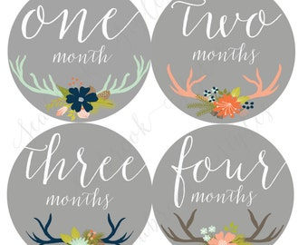 Monthly Onesie Sticker - Girl Antler's - 1 to 12 months