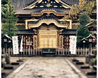 Travel Photography, Tokyo, Japan, Oeno Park Temple, Metallic Photographic Print