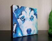 Blue eyed Husky Puppy origional deep canvas painting