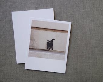 Le Chat Noir? (Polaroid Style Card Print) Wall in Paris