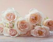White peach baby roses, Shabby Chic rustic Home Decor, floral photography, pastel, rustic, flower arrangement