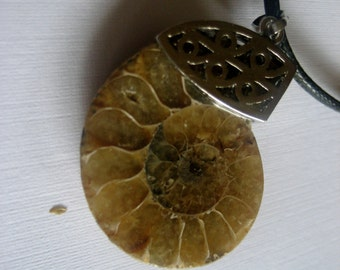 192-Genuine Ammonite Fossil Pendant Necklace, Ammonite Pendant Necklace, Gemstone Pendant, Ammonite, Ammonite Pendant, Ammonite Necklace