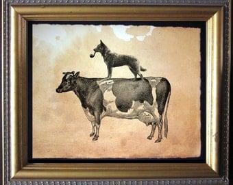 Australian Cattle Dog Riding Cow - Vintage Collage Art Print on Tea Stained Paper - Vintage Art Print - Vintage Paper