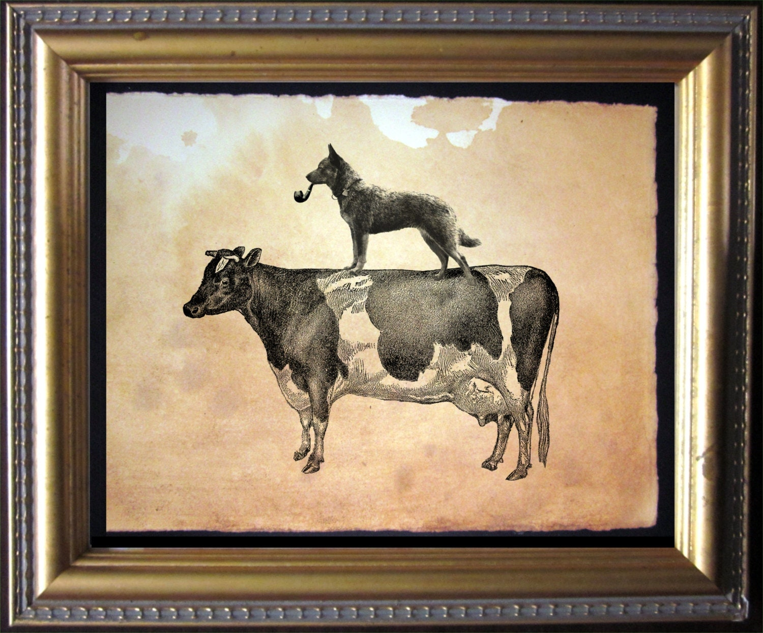 Australian Cattle Dog Riding Cow Vintage Collage Art Print