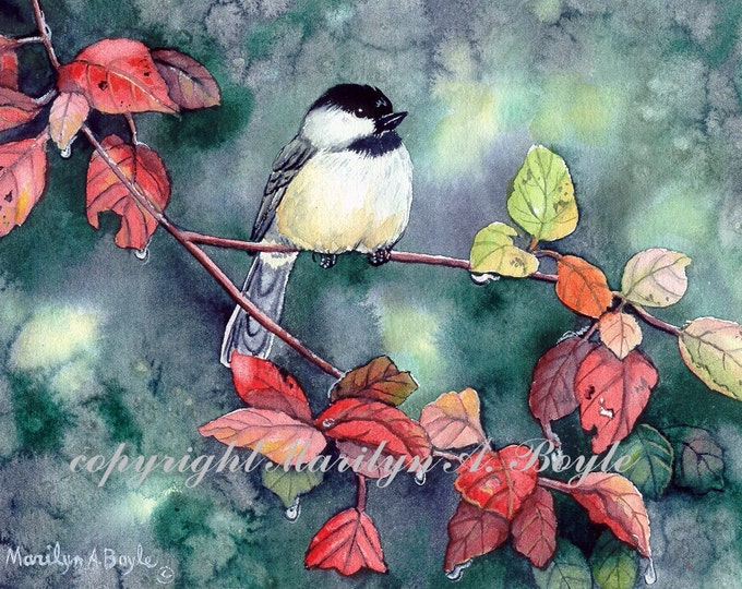 ACEO-LIMITED EDITION Print; run of 10, chickadee, autumn leaves, raindrops, nature, song bird, garden, 2.50 x 3.50 inches, red leaves,
