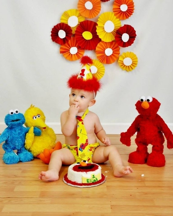 Pictures Elmo 1st Birthday With Smash Cake