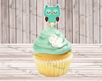 Cupcake Toppers - Set of 12 - Owl Mint Green and Brown Theme