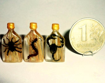 Dollhouse miniature 1:12 OOAK Vodka with spider, centipede, scorpion.