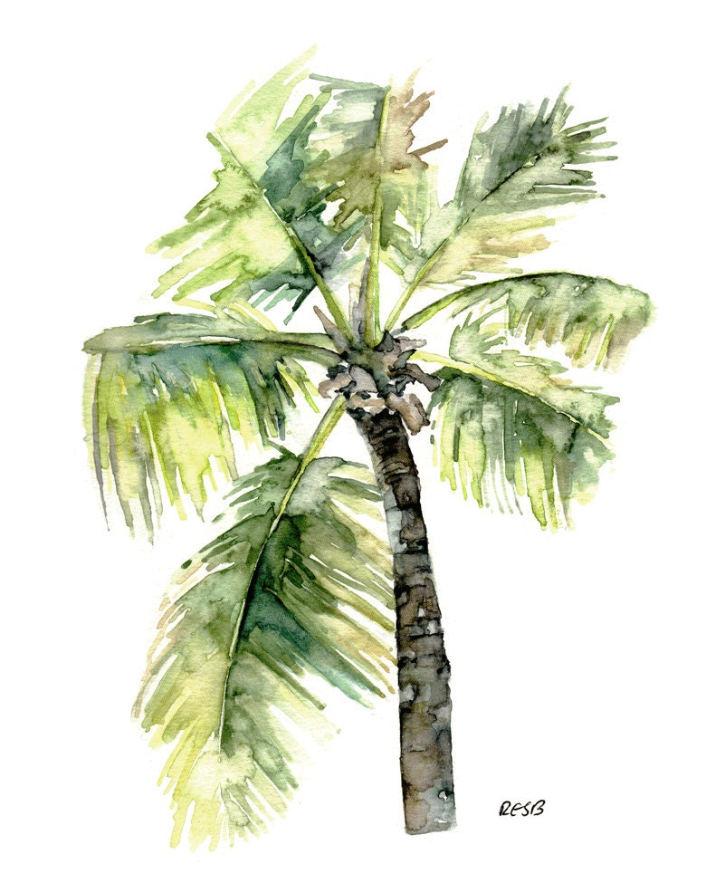 palm tree watercolor - photo #27