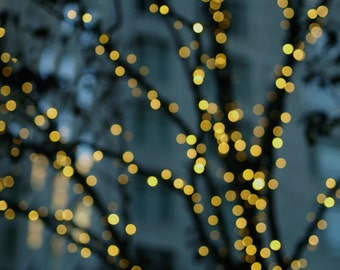 Lighted tree branches, winter tree photography, bokeh light abstract, fairy lights, yellow sparkle, teal yellow gold abstract twinkle lights