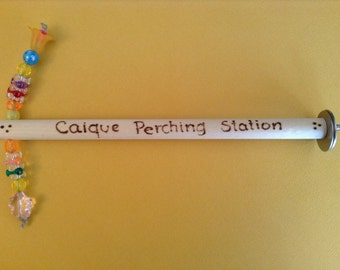 BIRD TOY / Fun-Included Perch: CAIQUES