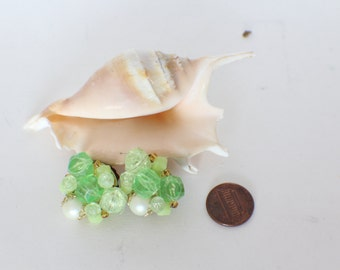 A Pair of Clip on Earrings
