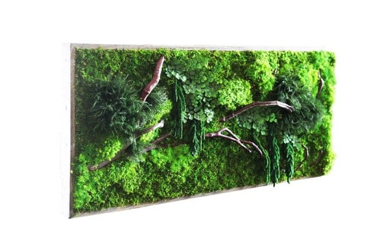 "40"" x 18"" LARGE Artisan Moss® -Plant Painting® - Real Preserved Plants in Reclaimed Wood Frame & Red Barked Branches."