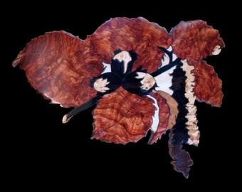 Hazelnuts Maïdou
