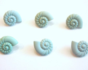 Sea Shell Buttons Turquoise Jesse James Buttons Ocean View Dress It Up Buttons Seashells Set of 6 Shank Back - 124