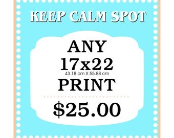 Any 17x22 Art Print from KEEP CALM SPOT