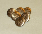 Eagle Buttons, Lot of 6  Vintage Metal Shank Sewing Buttons, Brushed Eagle Sewing Button 1 1/4 inch