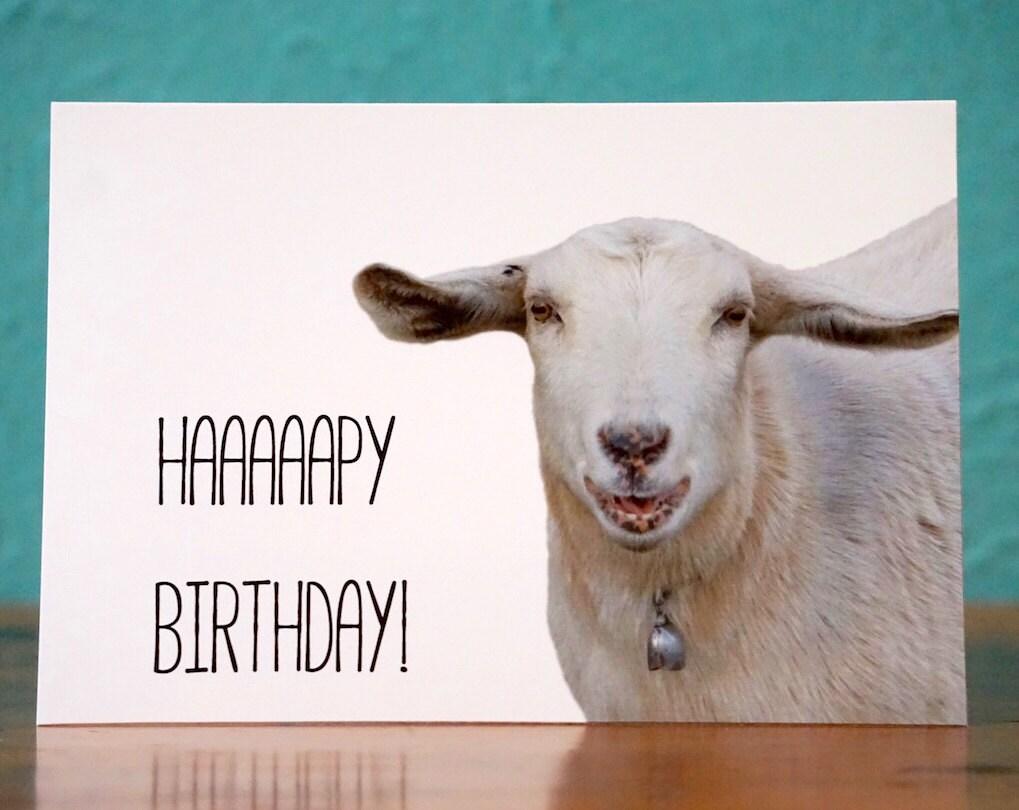 Happy birthday goat - photo#46