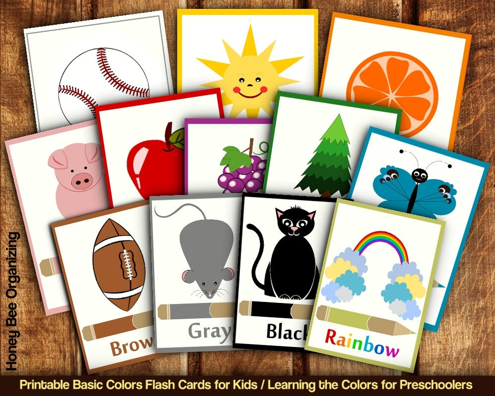 This is an image of Wild Printable Toddler Flash Cards