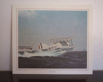 "Vintage Full-Color Lithograph ""Douglas DT"" of Early U.S. Naval Aircraft: Wings of the Navy ""The Golden Age of Stick and Wire"""