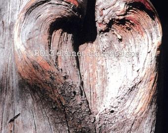 Valentine's Day , Heart Tree