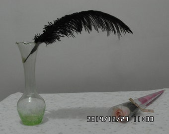 100pcs black Ostrich Feather Plume for Wedding centerpieces,