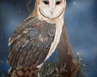 Barn owl - Wildlife art print - mounted ready to frame