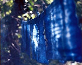 Indigo Blue Natural Dye Organic Cotton Tote Bags / Different Shibori patterns / with screen-print Collective Plant logo