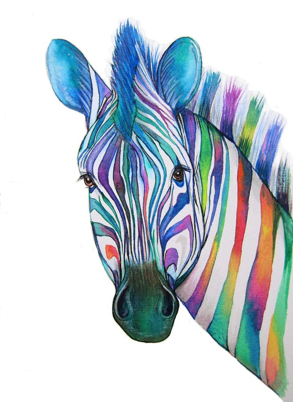 Colourful Zebra Art Signed Print From An Original By Vivaci