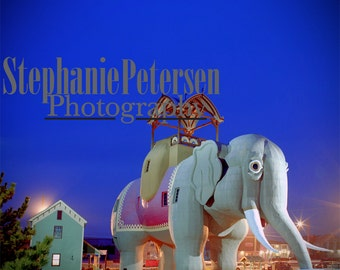 Stephanie Petersen Photography LUCY THE ELEPHANT real color photographic print from original negative long exposure night photo margate nj