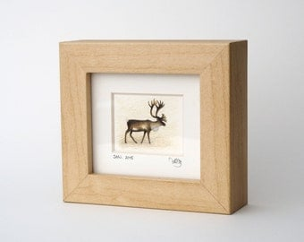 10/30 Reindeer Original Miniature Framed, Signed and Dated Pencil Drawing
