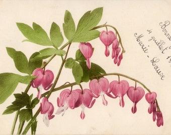 French antique postcards flower 31  Ephemera for scrapbook, collage, decoupage, craft,digital download,printable.