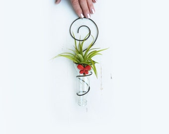 Air plant holder -Recycled bottle sconce - Clear with red butterfly bead