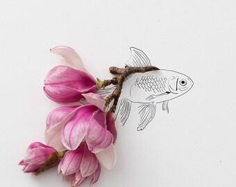 goldfish_no_1