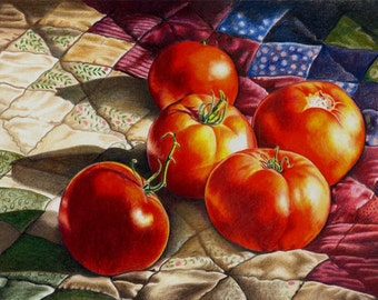 Colored Pencil Print of Tomatoes - 'From My Garden' by B Bruckner