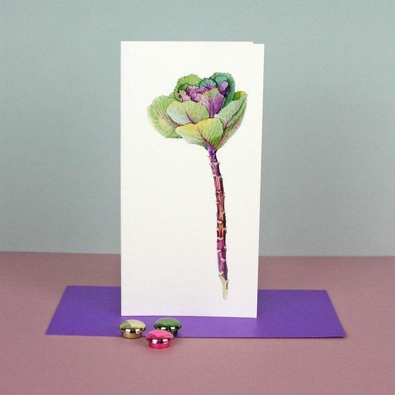 Botanical  Greetings Card 'Ornamental Cabbage'