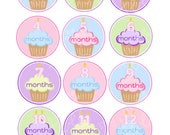 MONTHLY IRON-ONS Decals or Monthly stickers - 12 Monthly iron on heat transfer - for Baby girl - cupcakes