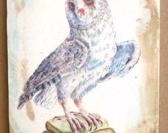 White Owl 5x7 art tile