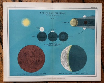 1908 eclipse of the moon chart original antique celestial astronomy print - the moon in opposition